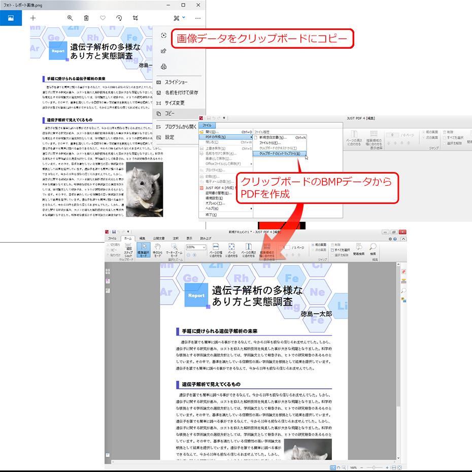 スナップショット pdf 保存 クリップボード